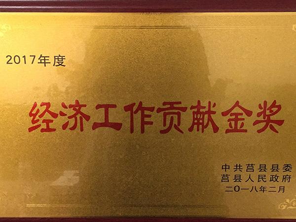 """安居集团获评全县""""经济工作贡献金奖"""""""